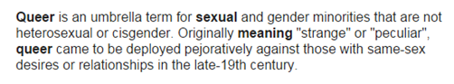 queer - lgbt define 1